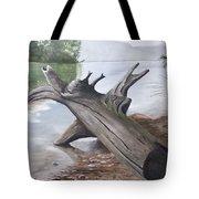 Nickajack Driftwood Tote Bag