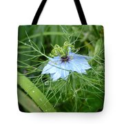 Nigella In Spring Rain Tote Bag
