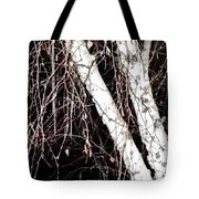 Night Branches Tote Bag
