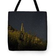 Night Cactus Tote Bag