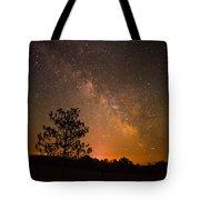 Night Companions Tote Bag