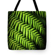 Night Forest Frond Tote Bag