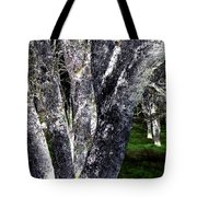 Night Grove Tote Bag