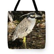 Night Heron Standing On A Rock In Key West Tote Bag