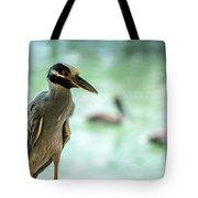 Night Herons Tote Bag