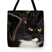 Night Hunter Tote Bag