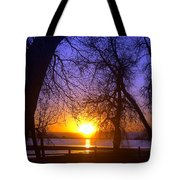 Night In Barr Lake Colorado Tote Bag
