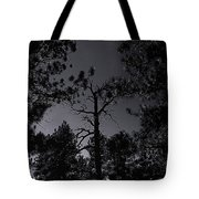 Night In The Druid Cathedral Tote Bag