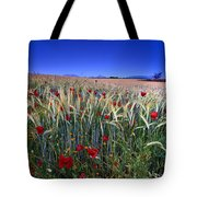 Night Poppies Tote Bag