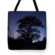 night sky and trees in Molino Canyon Mount Lemmon AZ Tote Bag