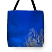 Night Sky Tote Bag by Steve Gadomski