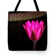 Night Time Lily Monet Tote Bag