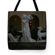 Night View Of Fountain In Front Of The Arlington Hotel, Arkansas, Ar Tote Bag