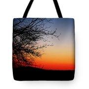 Nights Beauty Tote Bag