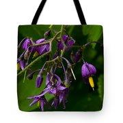 Nightshade Wildflowers #5607 Tote Bag