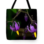 Nightshade Wildflowers #5616 Tote Bag