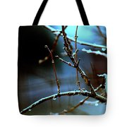 Nighttime In The Garden Tote Bag
