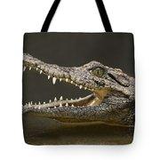 Nile Crocodile Tote Bag