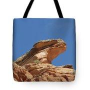 Nine Mile Canyon Utah  Tote Bag