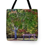 Ninety Six National Historic Site Bench In Autumn  Tote Bag