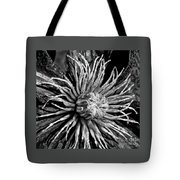 Niobe Clematis Study In Black And White Tote Bag