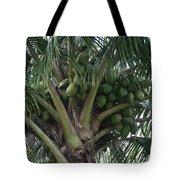 Niu Ola Hiki Coconut Palm Tote Bag
