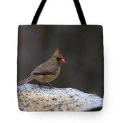 Natures Birds 53 Tote Bag