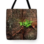 No Barriers To Growth Tote Bag