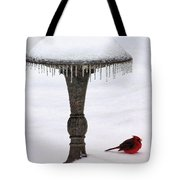 No Bath Today Tote Bag