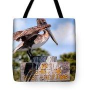 No Fishing Baby Pelican Tote Bag