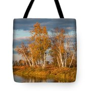Crex Meadows At Sunset Tote Bag
