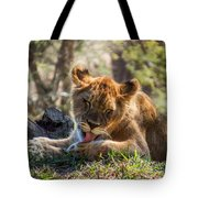 Lion Cub Lick Tote Bag