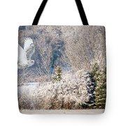 Snowy Owl Flight Tote Bag