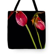 No Lady Slipper Was Harmed Tote Bag