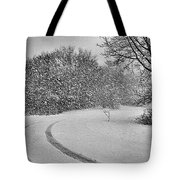 No Mail Today Tote Bag