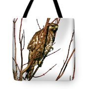 No Place To Hide Tote Bag