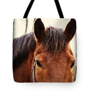 Noble Companion Tote Bag