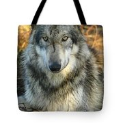 Noble Lupine Tote Bag