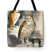 Nocturnal Scene With Three Owls Tote Bag