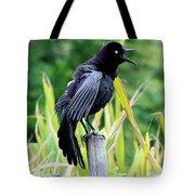 Noisy Grackle Tote Bag