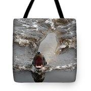 Noisy Sea Lion Tote Bag