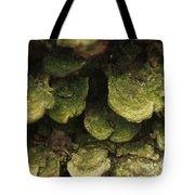 None Tote Bag