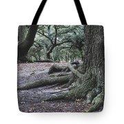Norfolk Trees Tote Bag