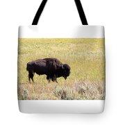 North American Bison- Buffalo In Field  Tote Bag