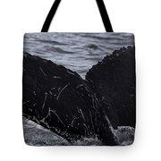 North Atlantic Humpback Tote Bag