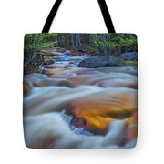 North Branch Rapid In Spring  Tote Bag