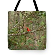 North Carolina Cardnial Tote Bag