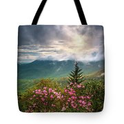 North Carolina Spring Flowers Blue Ridge Parkway Scenic Landscape Asheville Nc Tote Bag