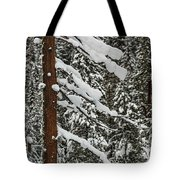 North Cascades Forest Tote Bag