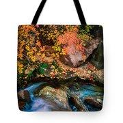 North Creek Fall Foliage Tote Bag